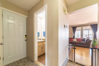 Photo 17: 49 Templeson Crescent NE in Calgary: Temple Detached for sale : MLS®# A1089563