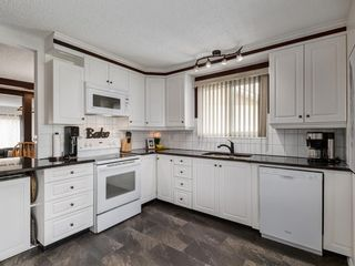 Photo 5: 44 MAITLAND Green NE in Calgary: Marlborough Park Detached for sale : MLS®# A1030134