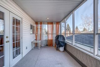 Photo 30: 543 Lake Newell Crescent SE in Calgary: Lake Bonavista Detached for sale : MLS®# A1081450