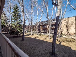 Photo 17: 213 3420 50 Street NW in Calgary: Varsity Apartment for sale : MLS®# A1095865