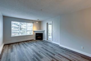Photo 18: 338 35 Richard Court SW in Calgary: Lincoln Park Apartment for sale : MLS®# A1124714