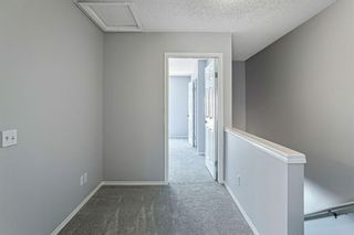 Photo 18: 144 Elgin Gardens SE in Calgary: McKenzie Towne Row/Townhouse for sale : MLS®# A1094770