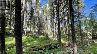 Photo 7: LOT 40 KALLUM DRIVE in 108 Mile Ranch: Vacant Land for sale : MLS®# R2591288