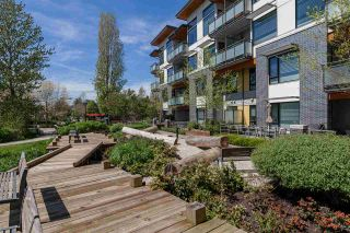 Photo 9: 101 3138 RIVERWALK Avenue in Vancouver: Champlain Heights Condo for sale (Vancouver East)  : MLS®# R2164116