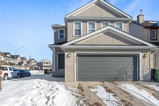 Photo 2: 101 COPPERSTONE Close SE in Calgary: Copperfield Detached for sale : MLS®# A1076956