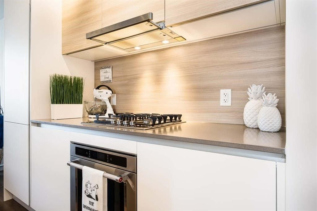 """Main Photo: 2505 988 QUAYSIDE Drive in New Westminster: Quay Condo for sale in """"RIVERSKY 2"""" : MLS®# R2515444"""