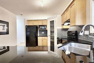 Photo 13: 8 Scimitar Circle NW in Calgary: Scenic Acres Detached for sale : MLS®# A1091817