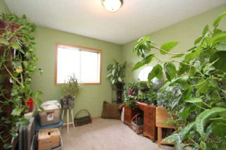 Photo 9: 184 STONEGATE Drive NW: Airdrie Residential Detached Single Family for sale : MLS®# C3621998