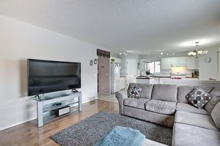 Photo 16: 144 Edgebrook Park NW in Calgary: Edgemont Detached for sale : MLS®# A1066773