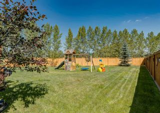 Photo 50: 176 Hawkmere Way: Chestermere Detached for sale : MLS®# A1129210