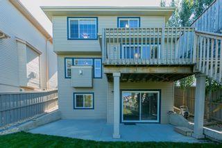 Photo 24: 20032 46 Avenue NW in Edmonton: Zone 58 House for sale : MLS®# E4262791