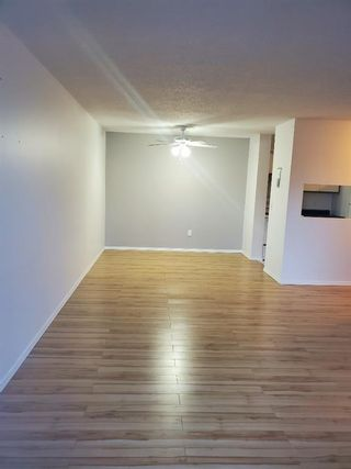 Photo 14: 404 21 Dover Point SE in Calgary: Dover Apartment for sale : MLS®# A1068387