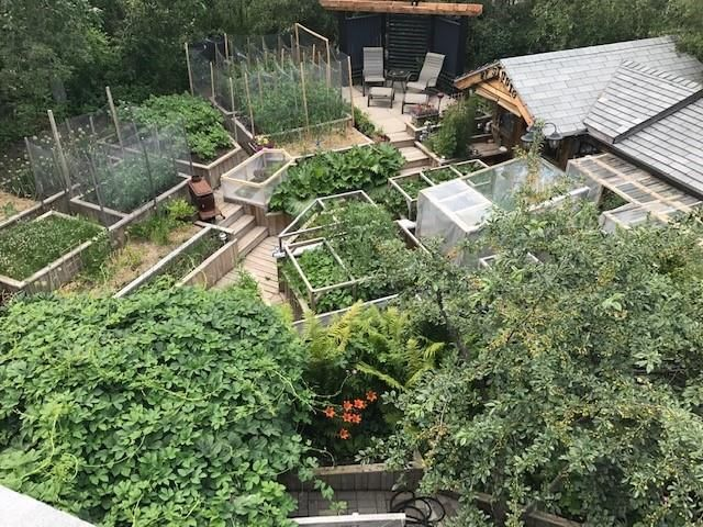 Aerial view of gardens. Grow your own food!