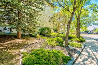 Photo 25: 103 11 Dover Point SE in Calgary: Dover Apartment for sale : MLS®# A1144552