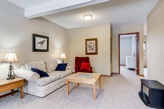 Photo 34: 2108 51 Avenue SW in Calgary: North Glenmore Park Detached for sale : MLS®# A1058307