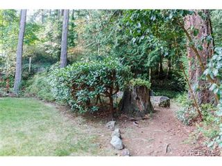 Photo 17: 301 510 Marsett Pl in VICTORIA: SW Royal Oak Row/Townhouse for sale (Saanich West)  : MLS®# 684520