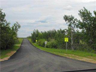 Photo 2: 134 56514 Rg Rd 60: Rural St. Paul County Rural Land/Vacant Lot for sale : MLS®# E4204219