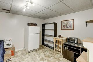 Photo 28: 183 Brabourne Road SW in Calgary: Braeside Detached for sale : MLS®# A1064696