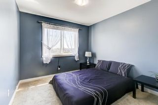 Photo 22: 97 Williamstown Park NW: Airdrie Detached for sale : MLS®# A1142238