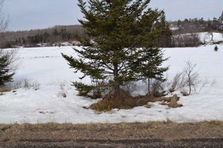 Photo 3: 311 Highway in Waughs River: 103-Malagash, Wentworth Vacant Land for sale (Northern Region)  : MLS®# 202104722