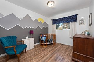Photo 7: 960 Evergreen Ave in : CV Courtenay East House for sale (Comox Valley)  : MLS®# 866340