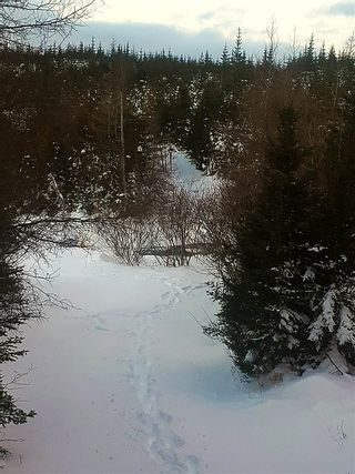 Photo 1: 0 Louisbourg Highway in Louisbourg: 207-C. B. County Vacant Land for sale (Cape Breton)  : MLS®# 202102405