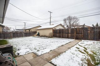 Photo 20: 53 Woodydell Avenue in Winnipeg: Residential for sale (2E)  : MLS®# 202026831
