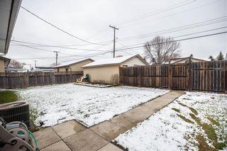 Photo 20: 53 Woodydell Avenue in Winnipeg: Residential for sale (2E)  : MLS®# 202026831