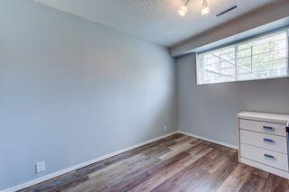 Photo 30: 3613 44 Avenue in Edmonton: Zone 29 House for sale : MLS®# E4246393