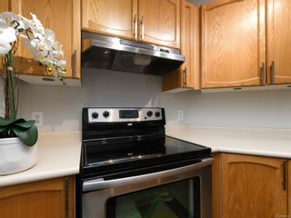 Photo 10: 205 930 North Park St in : Vi Central Park Condo for sale (Victoria)  : MLS®# 858199
