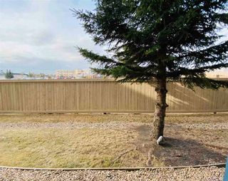 Photo 17: 143 16311 95 Street in Edmonton: Zone 28 Condo for sale : MLS®# E4240815
