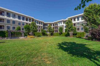 Photo 16: 314 3323 151 STREET in Surrey: Morgan Creek Condo for sale (South Surrey White Rock)  : MLS®# R2195662