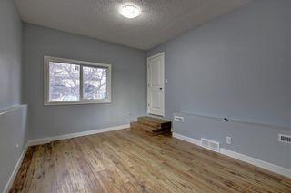 Photo 14: 1728 54 Street SE in Calgary: Penbrooke Meadows Detached for sale : MLS®# C4220376