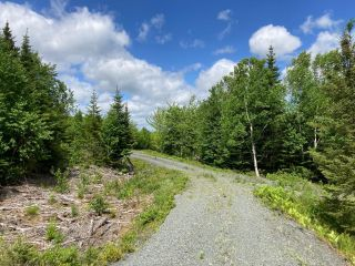 Photo 9: Lot 29 Anderson Drive in Sherbrooke: 303-Guysborough County Vacant Land for sale (Highland Region)  : MLS®# 202115631