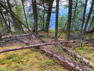 """Photo 13: LOT 7 S SOMERSET Drive: Cluculz Lake Land for sale in """"SOMERSET ESTATES"""" (PG Rural West (Zone 77))  : MLS®# R2596563"""