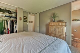 Photo 25: 3454 Twp Rd 290 A Township: Rural Mountain View County Detached for sale : MLS®# A1113773