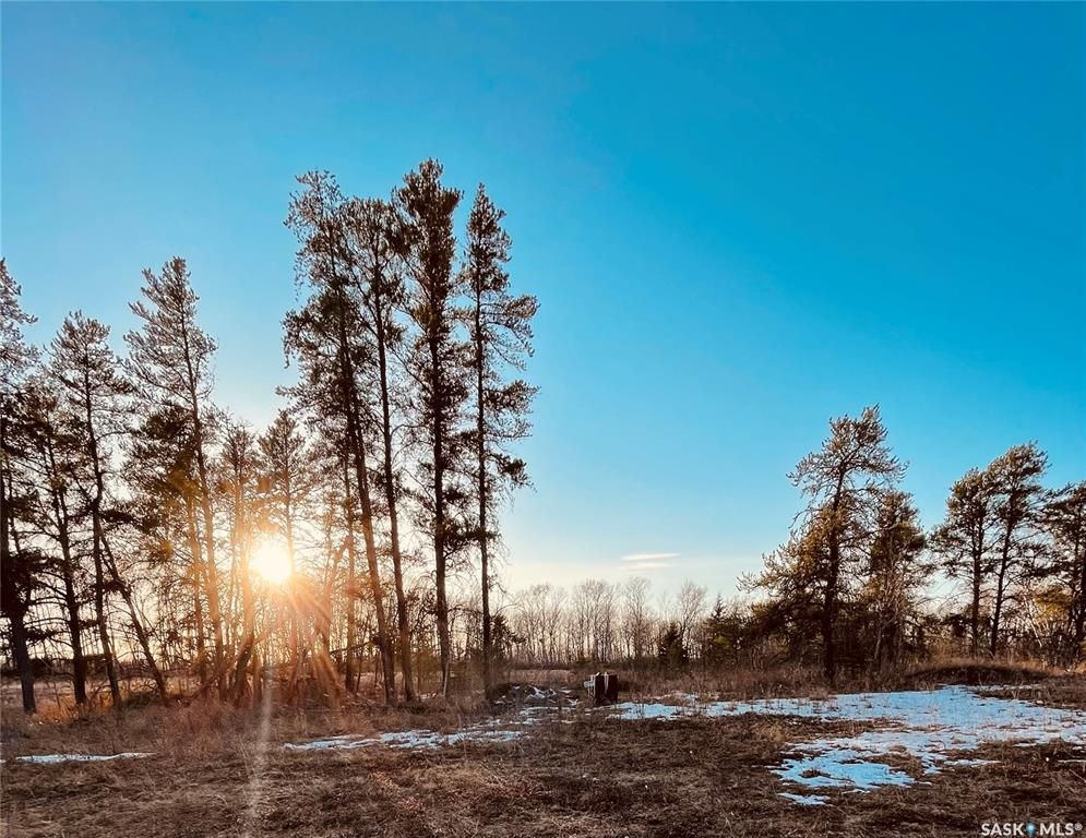 Main Photo: Over 1 acre lots in Hudson Bay: Lot/Land for sale : MLS®# SK850475