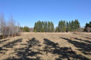 Photo 14: 10 57126 Range Road 12: Rural Barrhead County Rural Land/Vacant Lot for sale : MLS®# E4241768