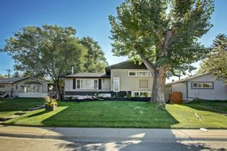 Main Photo: 99 Ferncliff Crescent SE in Calgary: Fairview Detached for sale : MLS®# A1148773