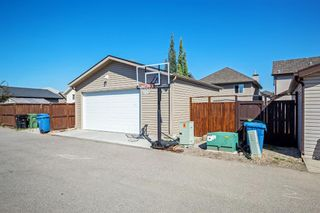 Photo 30: 744 PRESTWICK Circle SE in Calgary: McKenzie Towne Detached for sale : MLS®# A1024986