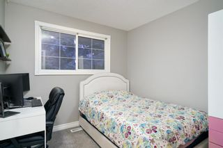 Photo 18: 6703 24 Avenue NE in Calgary: Pineridge Detached for sale : MLS®# A1124437