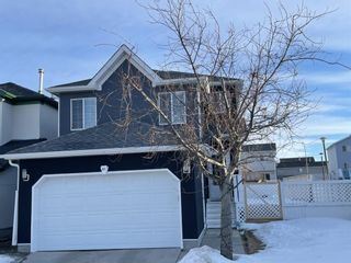 Main Photo: 81 Martin Crossing Green NE in Calgary: Martindale Detached for sale : MLS®# A1074548
