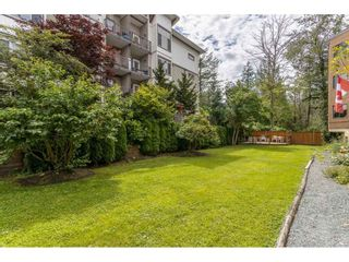 """Photo 25: 35 11900 228TH Street in Maple Ridge: East Central Condo for sale in """"Moonlite Grove"""" : MLS®# R2523375"""