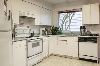Photo 35: 19034 DOERKSEN Drive in Pitt Meadows: Central Meadows House for sale : MLS®# R2519317