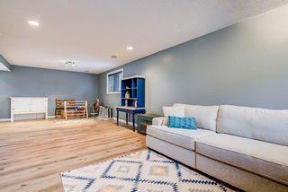 Photo 33: 22 WESTMEWS Drive: Fort Saskatchewan House for sale : MLS®# E4245512
