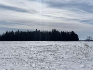 Photo 18: RR 25 HWY 661: Rural Westlock County Rural Land/Vacant Lot for sale : MLS®# E4236665