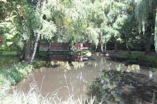 """Photo 35: 107 7001 EDEN Drive in Chilliwack: Sardis West Vedder Rd Townhouse for sale in """"Edenbank"""" (Sardis)  : MLS®# R2624887"""