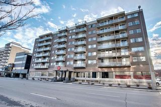 Photo 38: 302 429 14 Street NW in Calgary: Hillhurst Apartment for sale : MLS®# A1075167