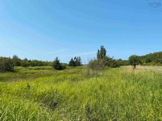 Photo 21: Shore Road in Merigomish: 108-Rural Pictou County Vacant Land for sale (Northern Region)  : MLS®# 202120405