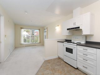Photo 7: 302 1070 Southgate St in : Vi Fairfield West Condo for sale (Victoria)  : MLS®# 851621